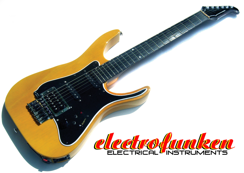 What Are Electrical Instruments : Electrofunken guitars and electrical instruments
